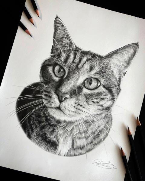 Biondo-Art-Sabre-Car-Portrait-Drawing